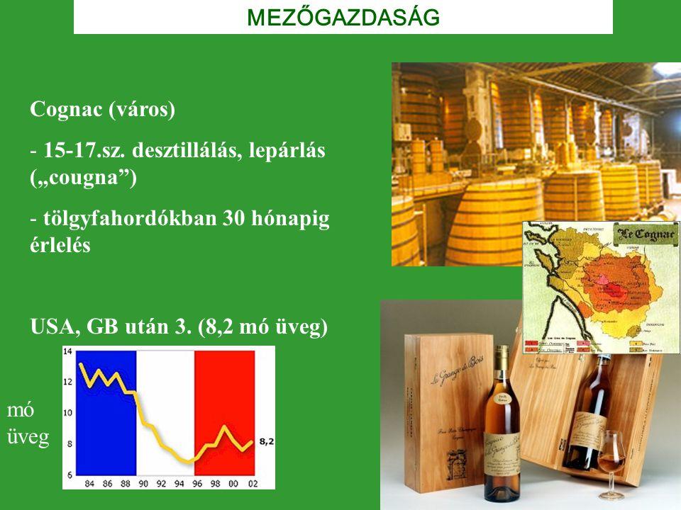 """MEZŐGAZDASÁG Cognac (város) 15-17.sz. desztillálás, lepárlás (""""cougna ) tölgyfahordókban 30 hónapig érlelés."""