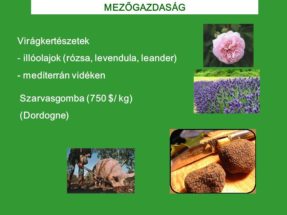 MEZŐGAZDASÁG Virágkertészetek. illóolajok (rózsa, levendula, leander) - mediterrán vidéken. Szarvasgomba (750 $/ kg)