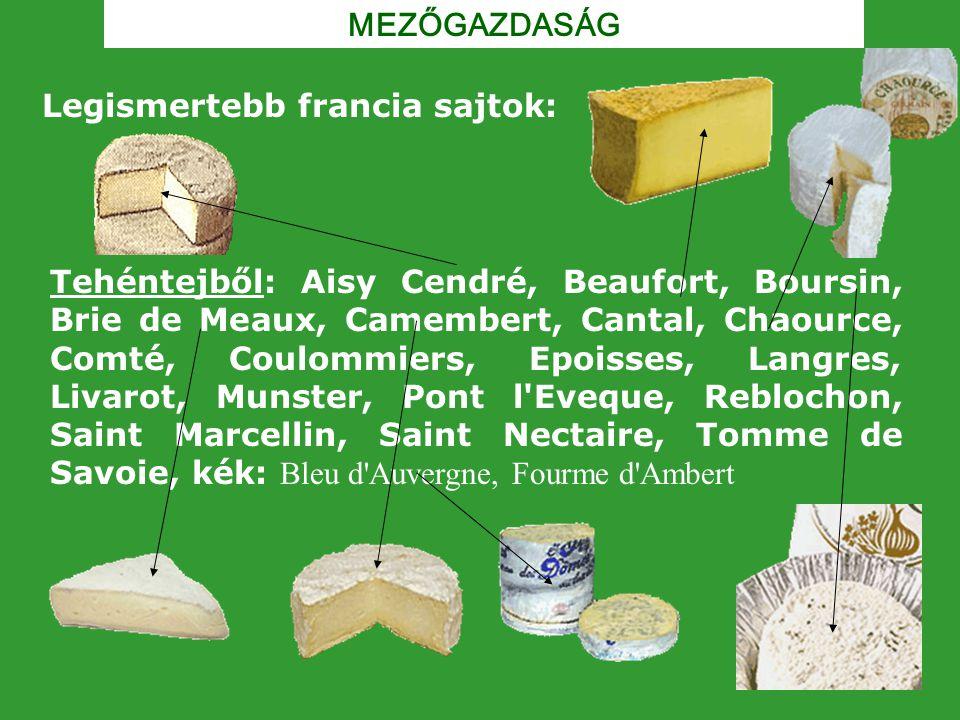 MEZŐGAZDASÁG Legismertebb francia sajtok: