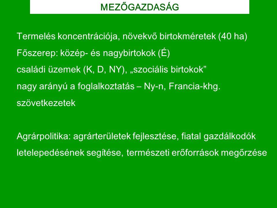 MEZŐGAZDASÁG Termelés koncentrációja, növekvő birtokméretek (40 ha) Főszerep: közép- és nagybirtokok (É)