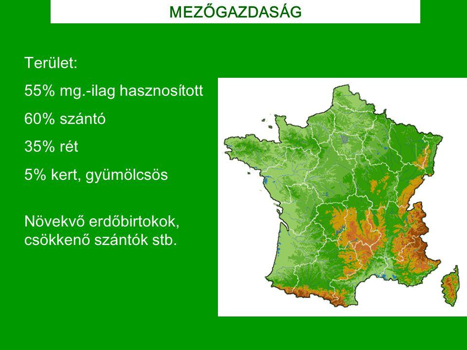MEZŐGAZDASÁG Terület: 55% mg.-ilag hasznosított. 60% szántó. 35% rét. 5% kert, gyümölcsös. Növekvő erdőbirtokok,
