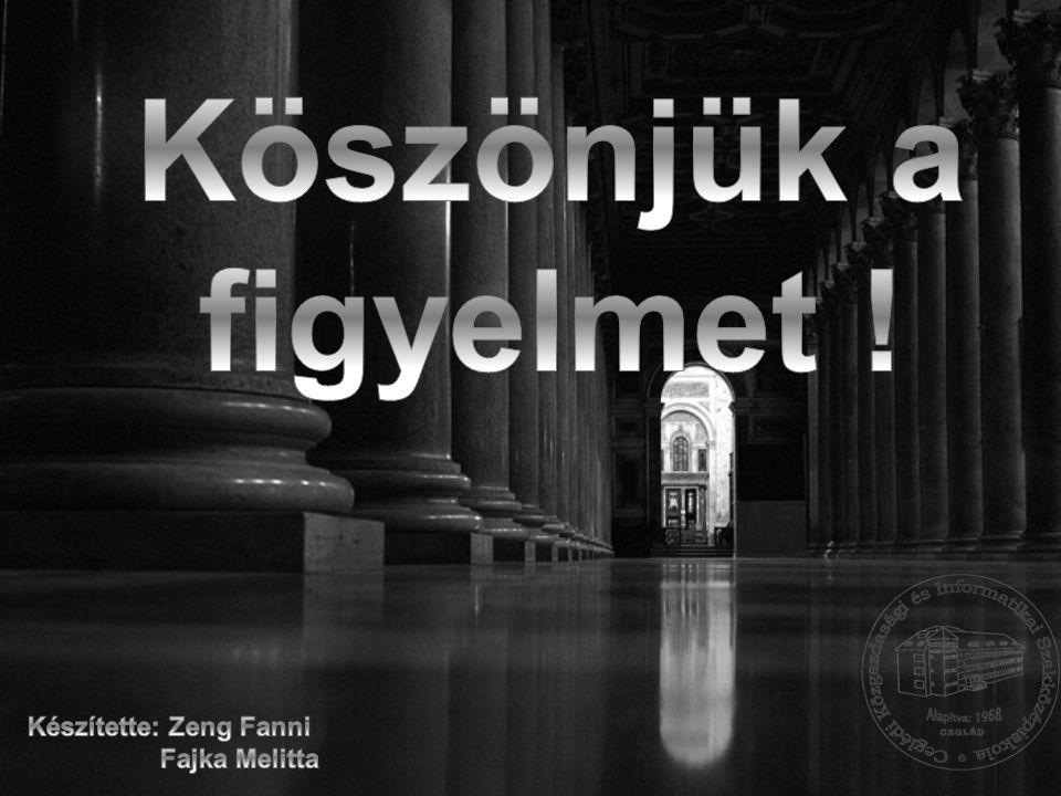 Köszönjük a figyelmet ! Készítette: Zeng Fanni Fajka Melitta