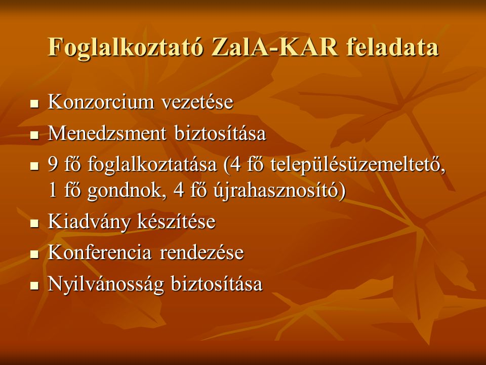 Foglalkoztató ZalA-KAR feladata