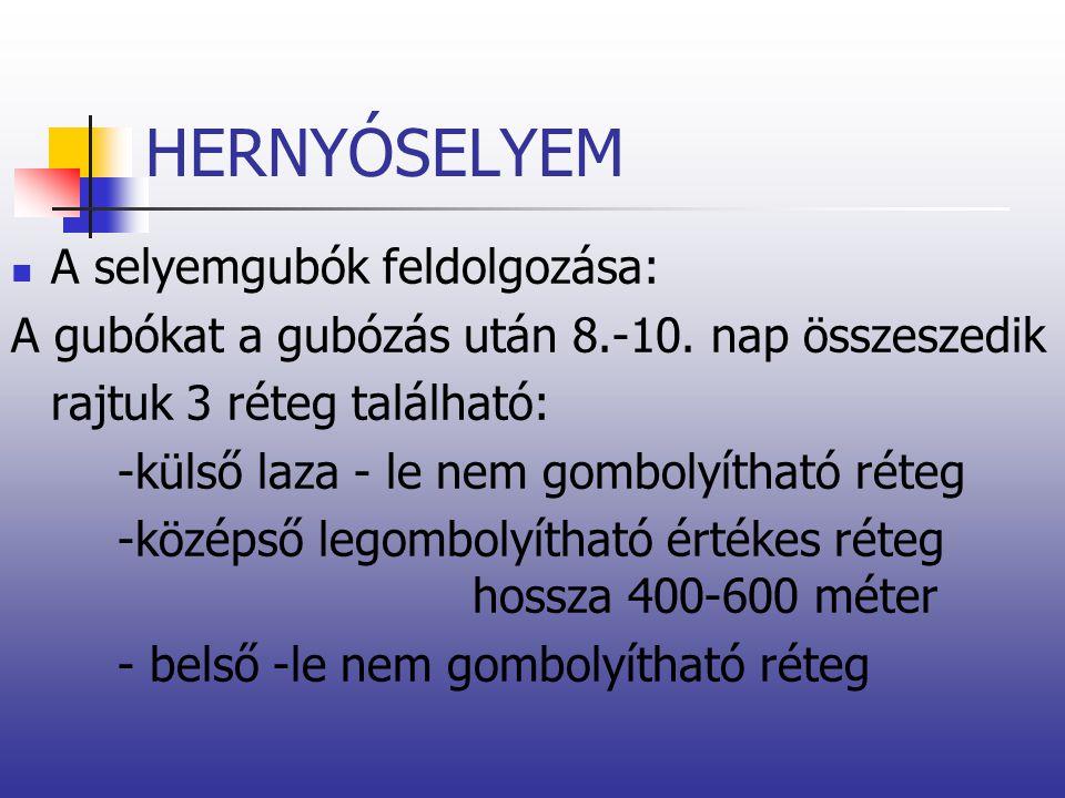 HERNYÓSELYEM A selyemgubók feldolgozása: