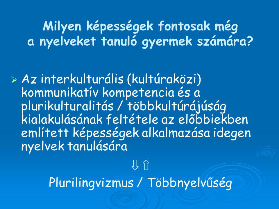Milyen képességek fontosak még a nyelveket tanuló gyermek számára