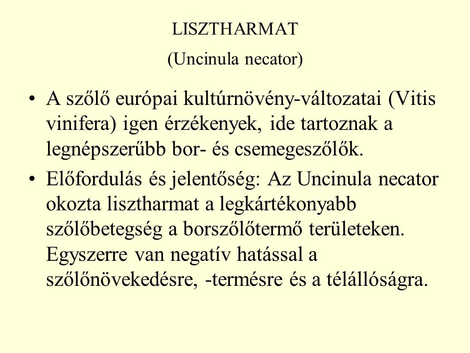 LISZTHARMAT (Uncinula necator)