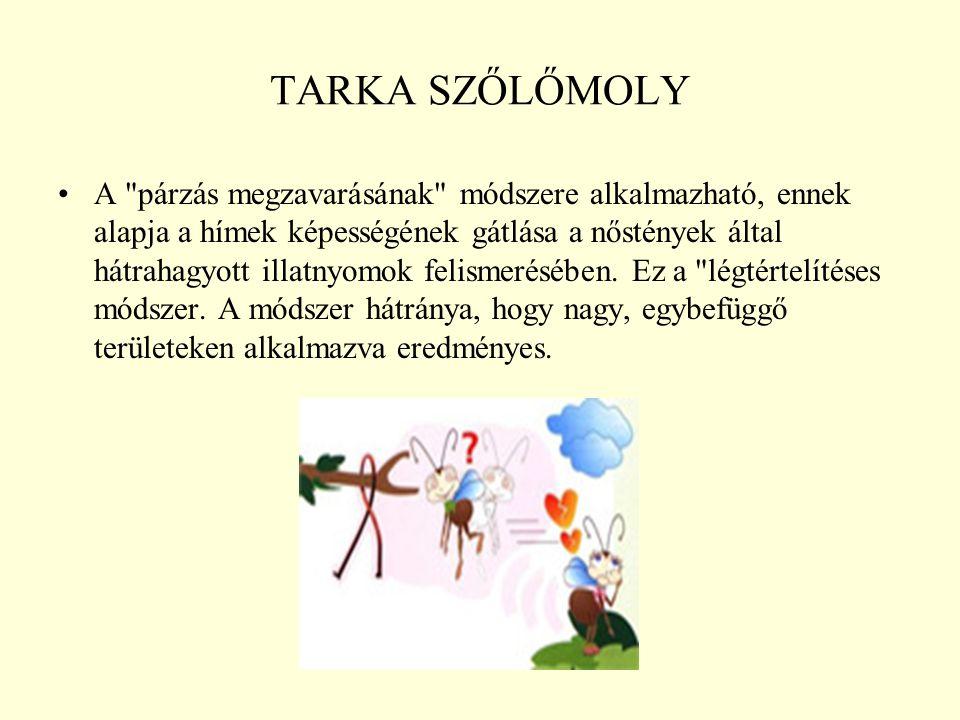 TARKA SZŐLŐMOLY
