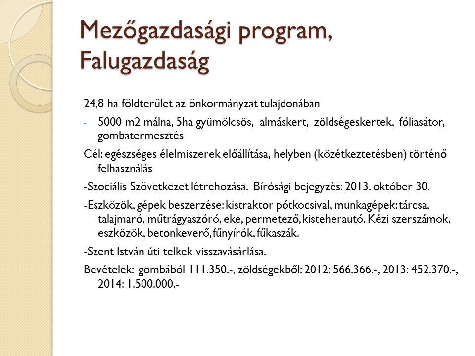 Mezőgazdasági program, Falugazdaság