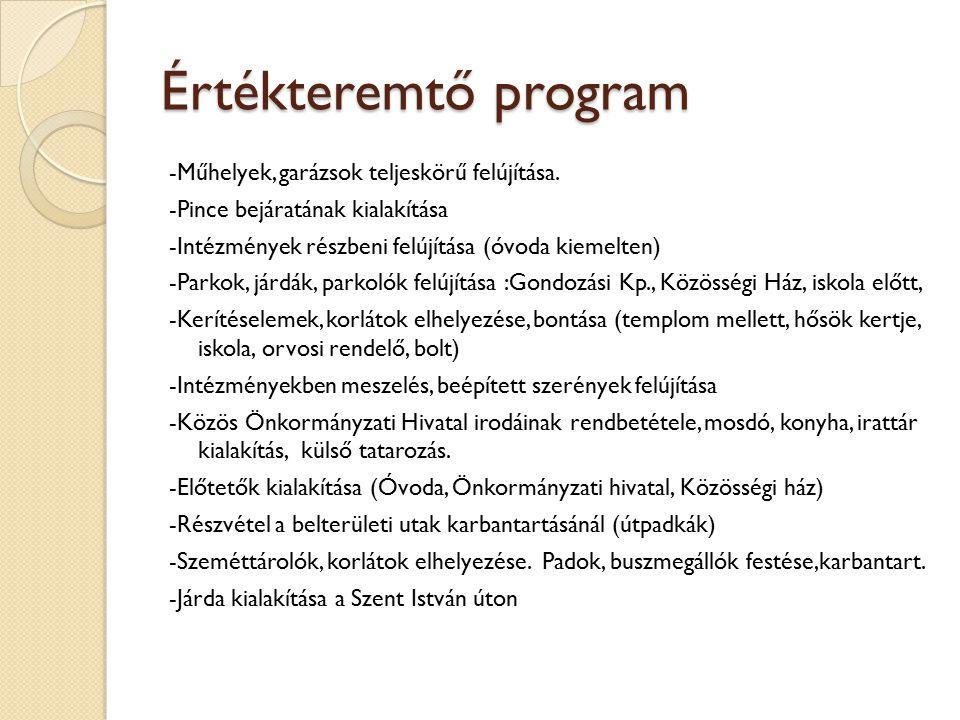 Értékteremtő program
