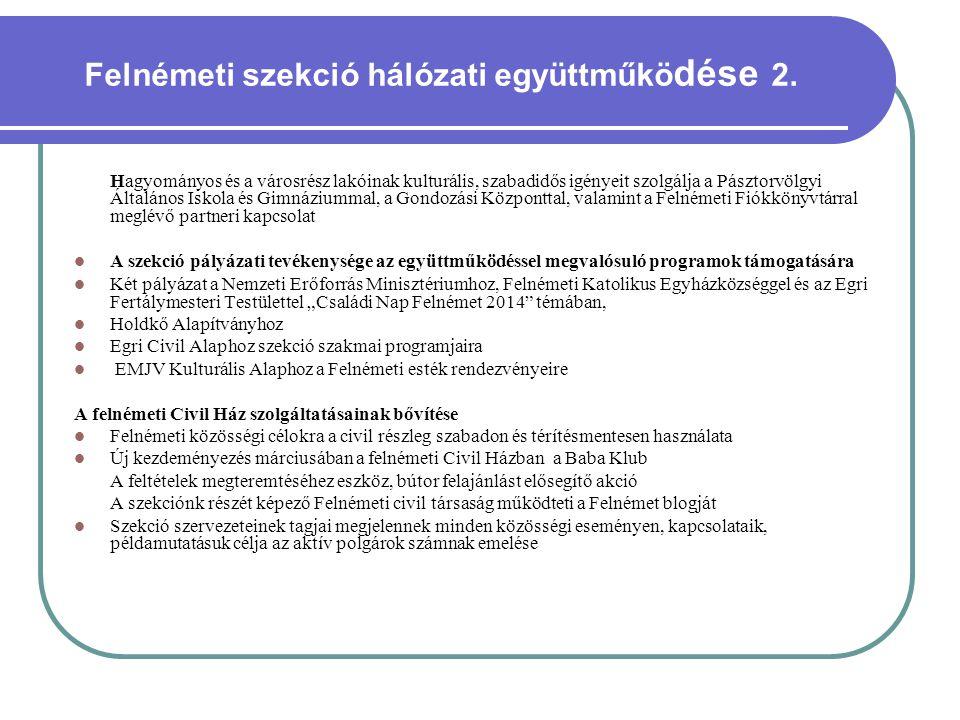Felnémeti szekció hálózati együttműködése 2.