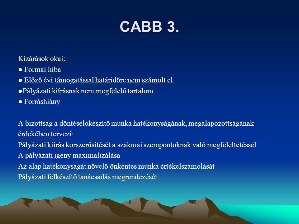 CABB 3. Kizárások okai: ● Formai hiba