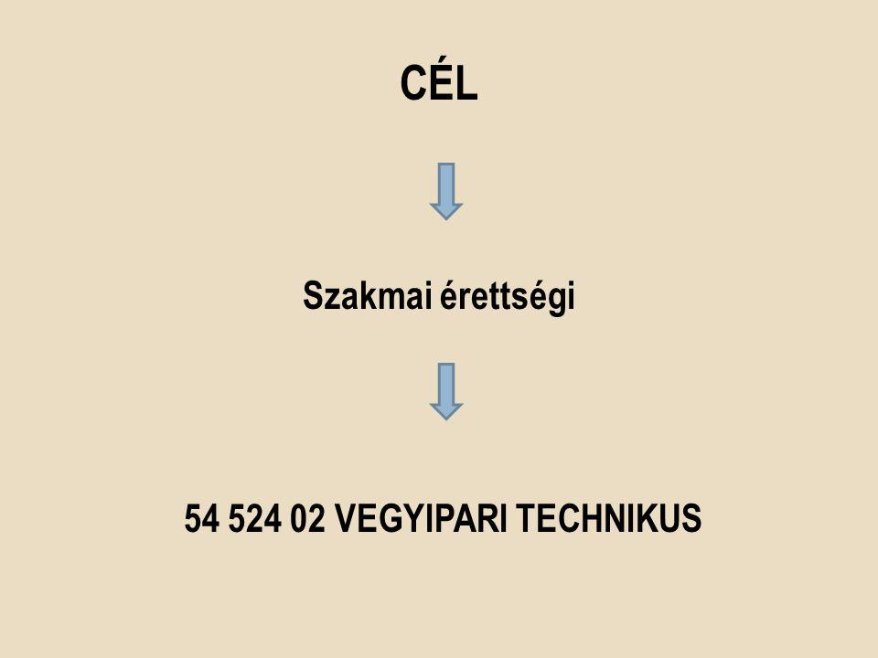 Szakmai érettségi 54 524 02 VEGYIPARi technikus