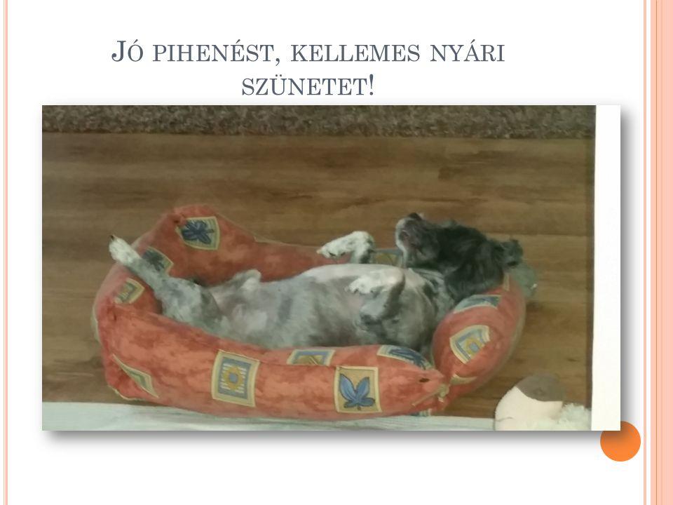 Jó pihenést, kellemes nyári szünetet!
