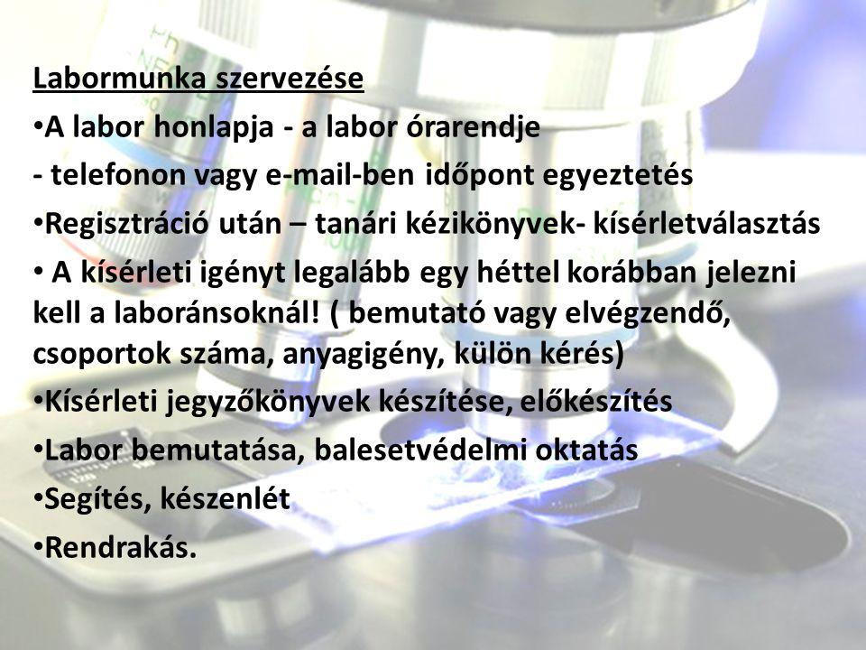 Labormunka szervezése