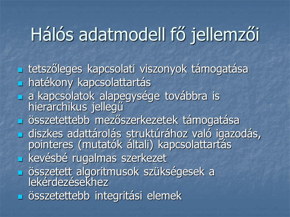 Hálós adatmodell fő jellemzői