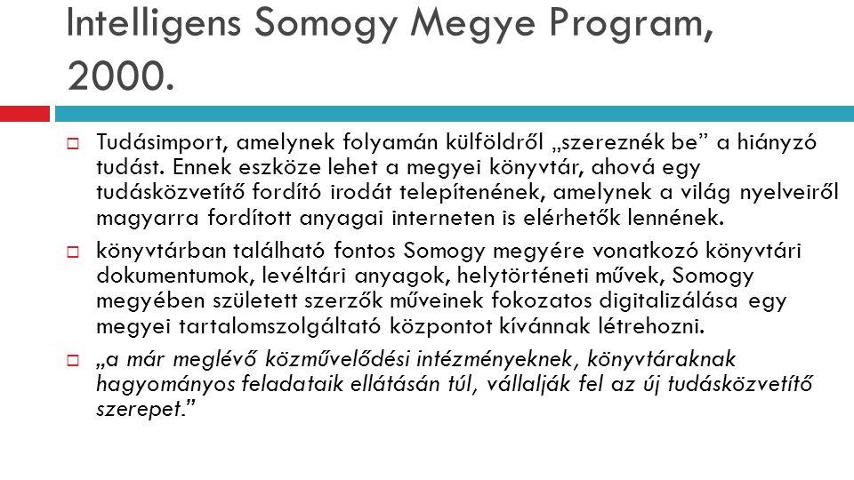 Intelligens Somogy Megye Program, 2000.