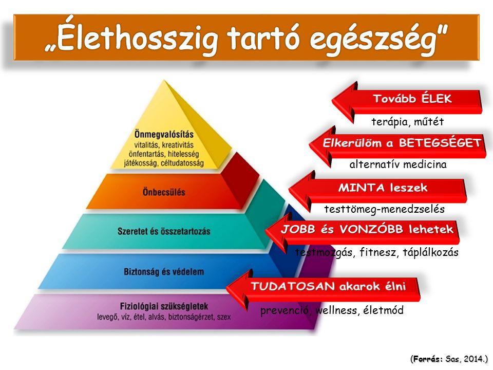 Az egészség Maslow piramisa megfordul…