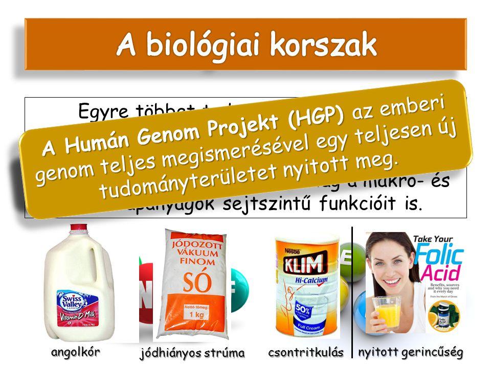 A biológiai korszak Populáció szintű marketing