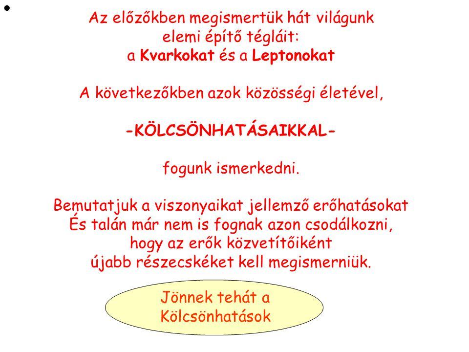 -KÖLCSÖNHATÁSAIKKAL-