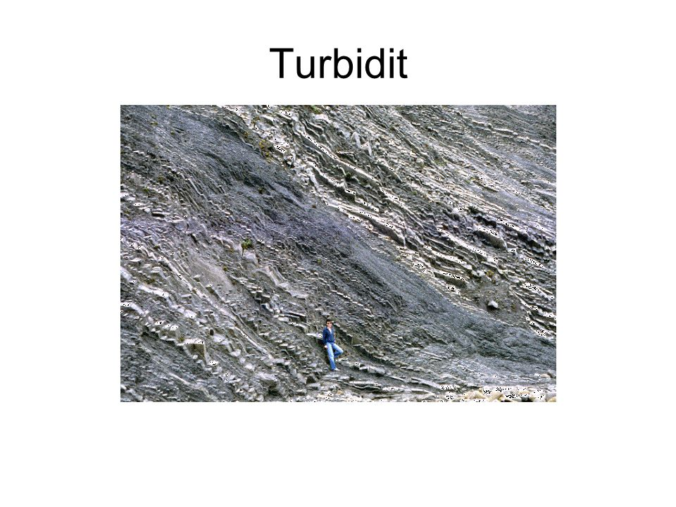 Turbidit
