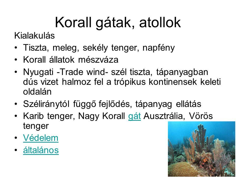 Korall gátak, atollok Kialakulás Tiszta, meleg, sekély tenger, napfény