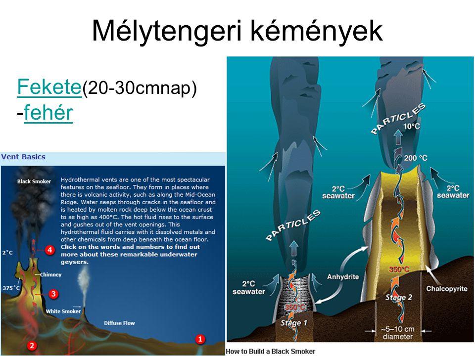 Mélytengeri kémények Fekete(20-30cmnap) -fehér