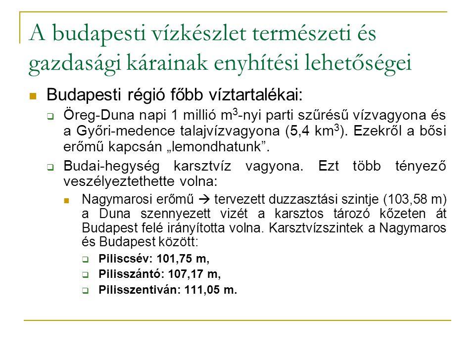 A budapesti vízkészlet természeti és gazdasági kárainak enyhítési lehetőségei