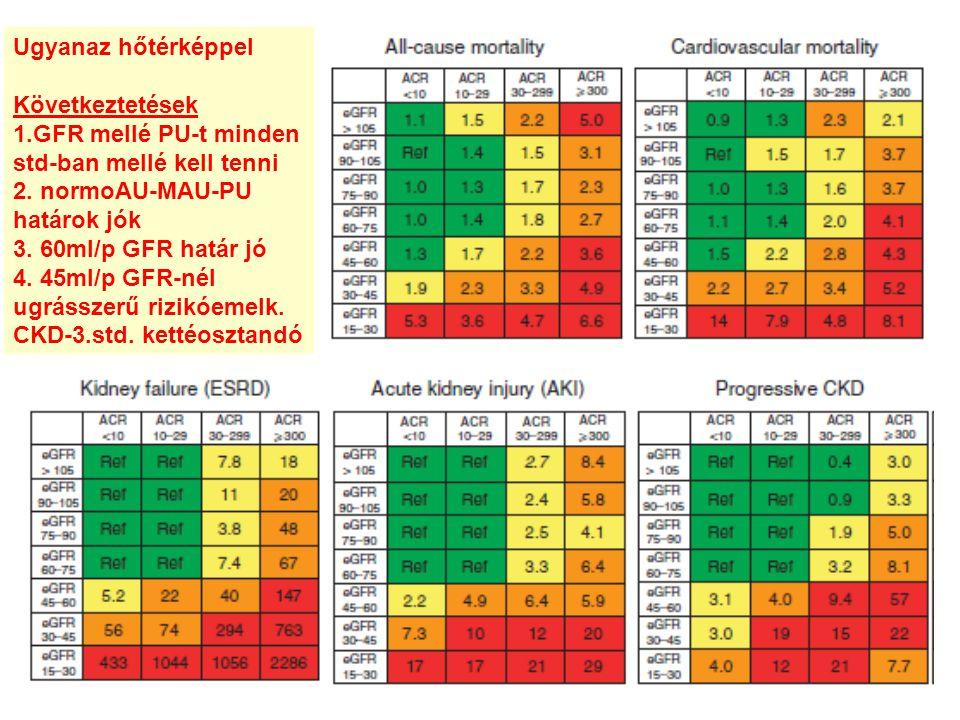 Ugyanaz hőtérképpel Következtetések. 1.GFR mellé PU-t minden. std-ban mellé kell tenni. 2. normoAU-MAU-PU.