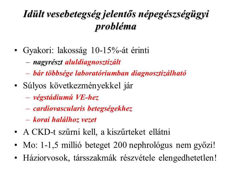 Idült vesebetegség jelentős népegészségügyi probléma