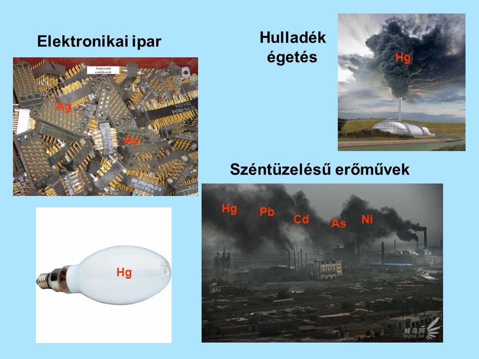 Széntüzelésű erőművek