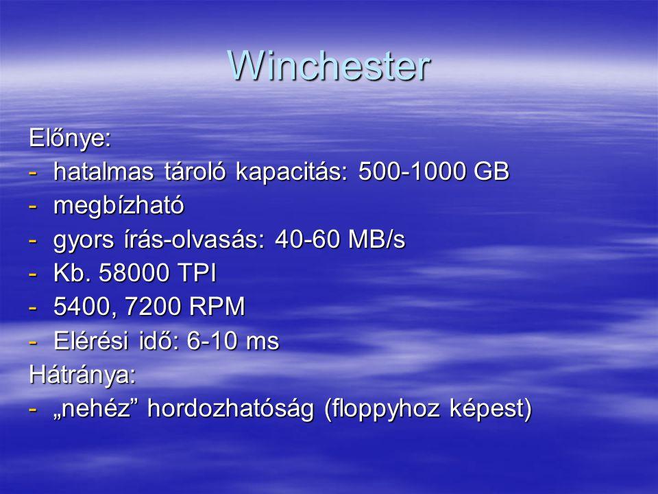 Winchester Előnye: hatalmas tároló kapacitás: 500-1000 GB megbízható