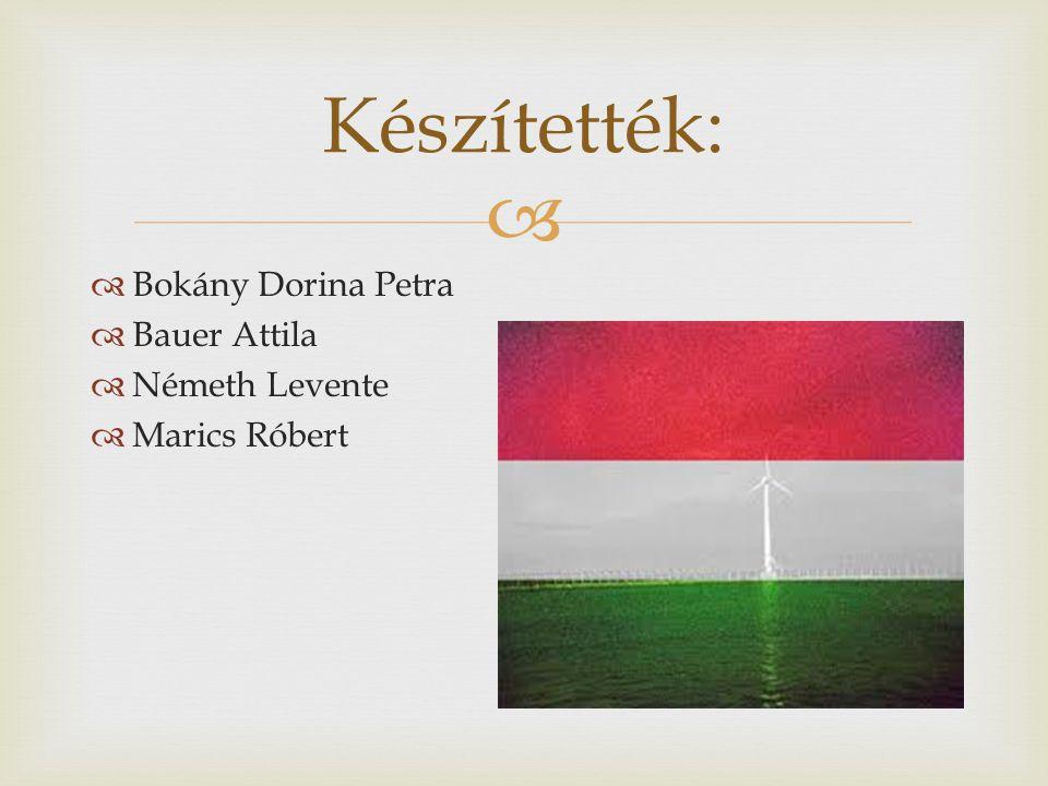 Készítették: Bokány Dorina Petra Bauer Attila Németh Levente