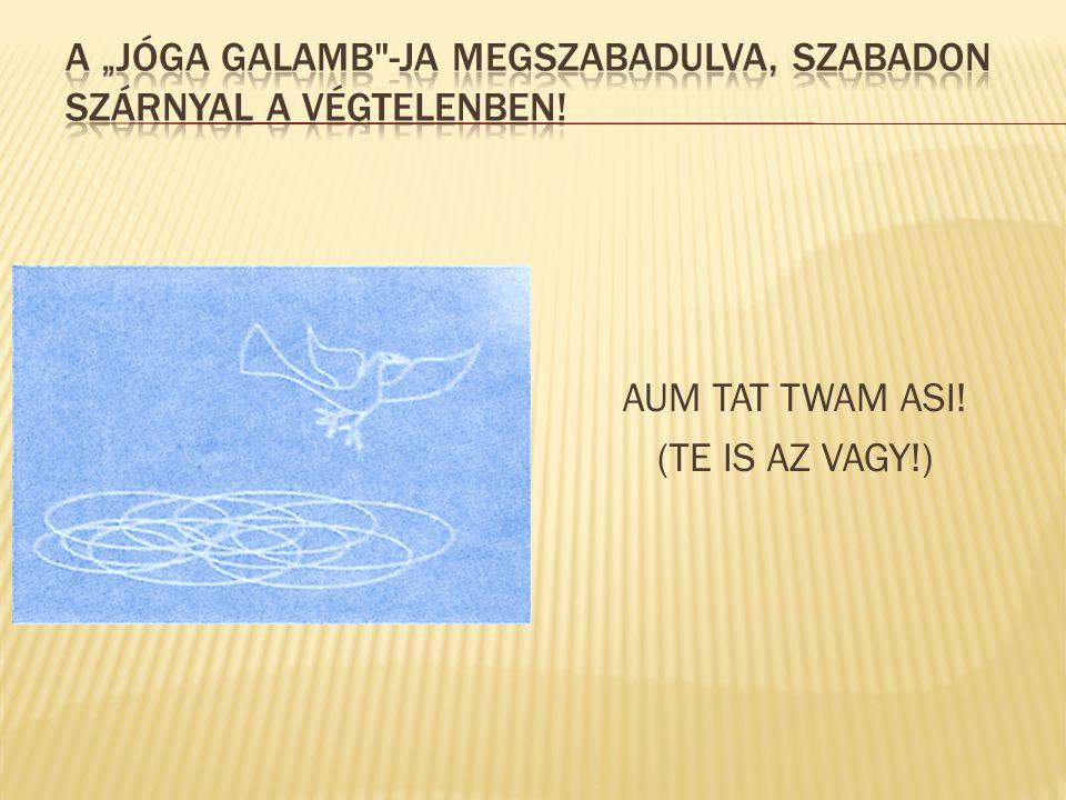 """A """"Jóga Galamb -ja megszabadulva, szabadon szárnyal a VÉGTELENBEN!"""