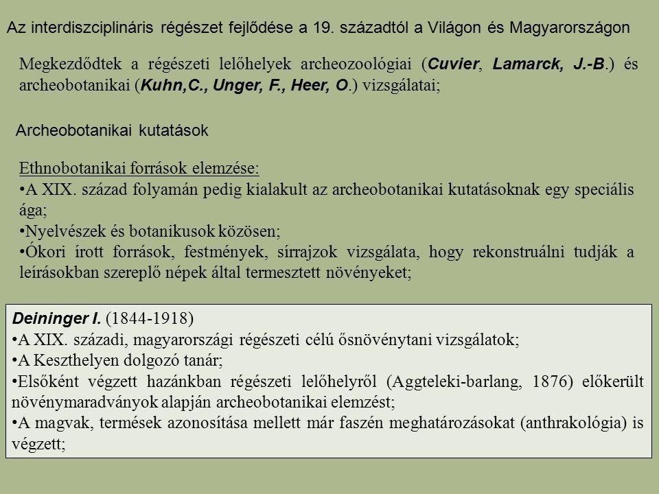 Ethnobotanikai források elemzése: