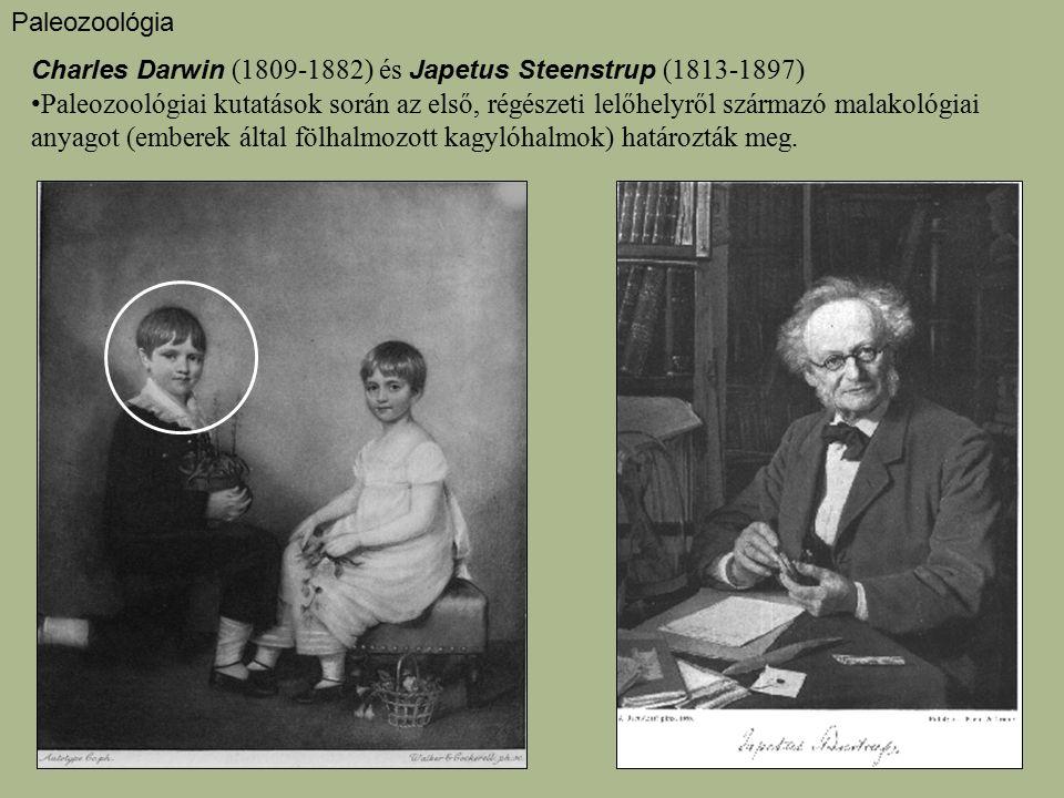 Paleozoológia Charles Darwin (1809-1882) és Japetus Steenstrup (1813-1897)
