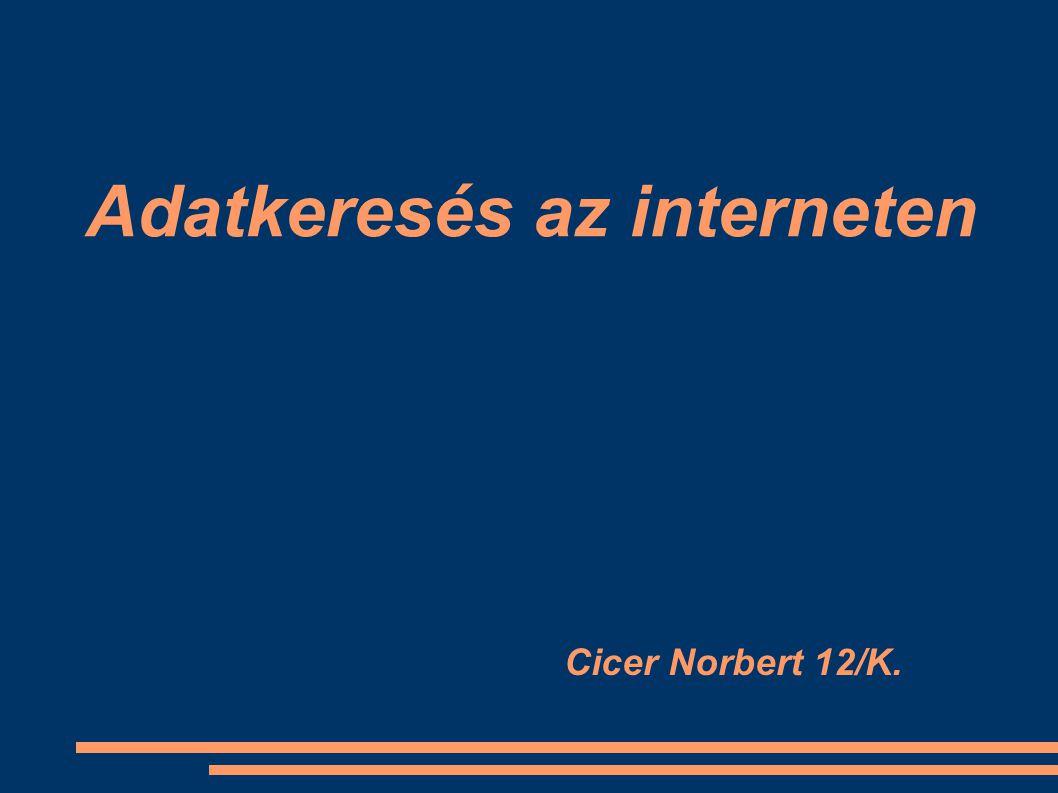 Adatkeresés az interneten