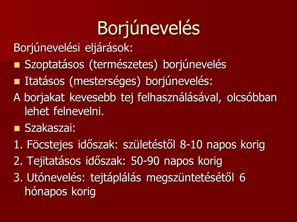 Borjúnevelés Borjúnevelési eljárások: