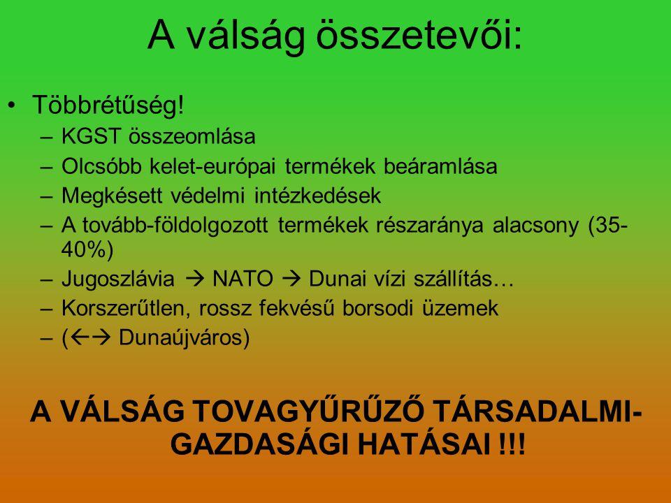 A VÁLSÁG TOVAGYŰRŰZŐ TÁRSADALMI-GAZDASÁGI HATÁSAI !!!