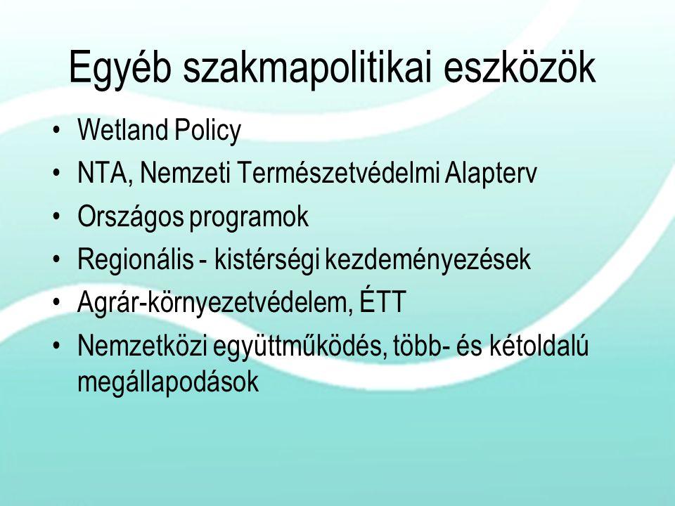 Egyéb szakmapolitikai eszközök