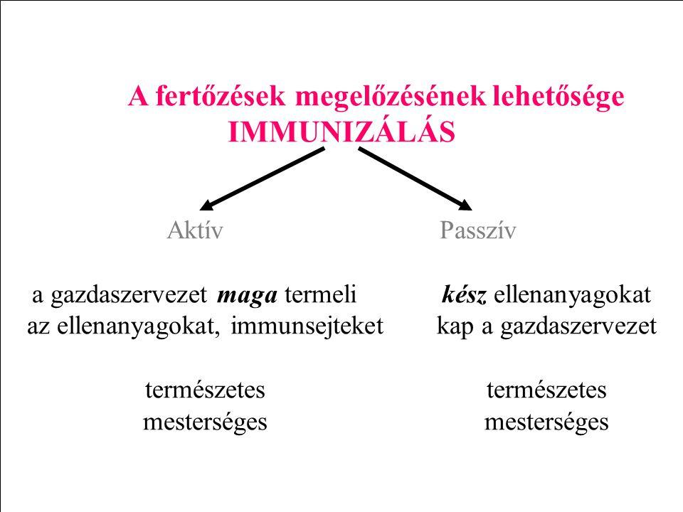 IMMUNIZÁLÁS A fertőzések megelőzésének lehetősége Aktív Passzív