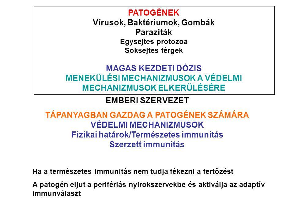 Vírusok, Baktériumok, Gombák Paraziták