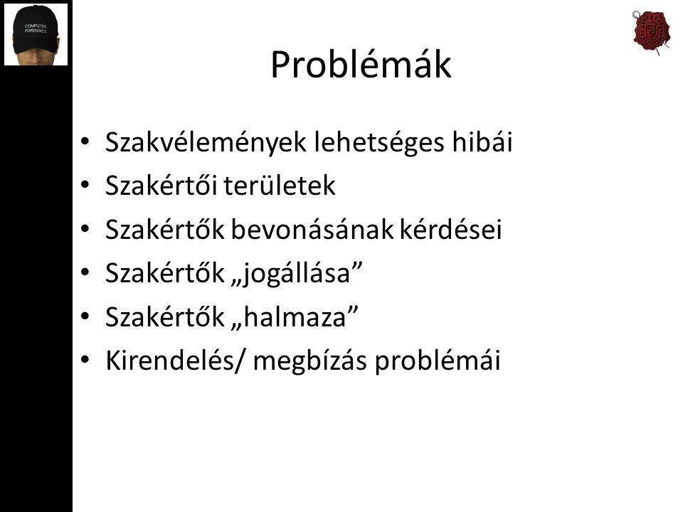 Problémák Szakvélemények lehetséges hibái Szakértői területek