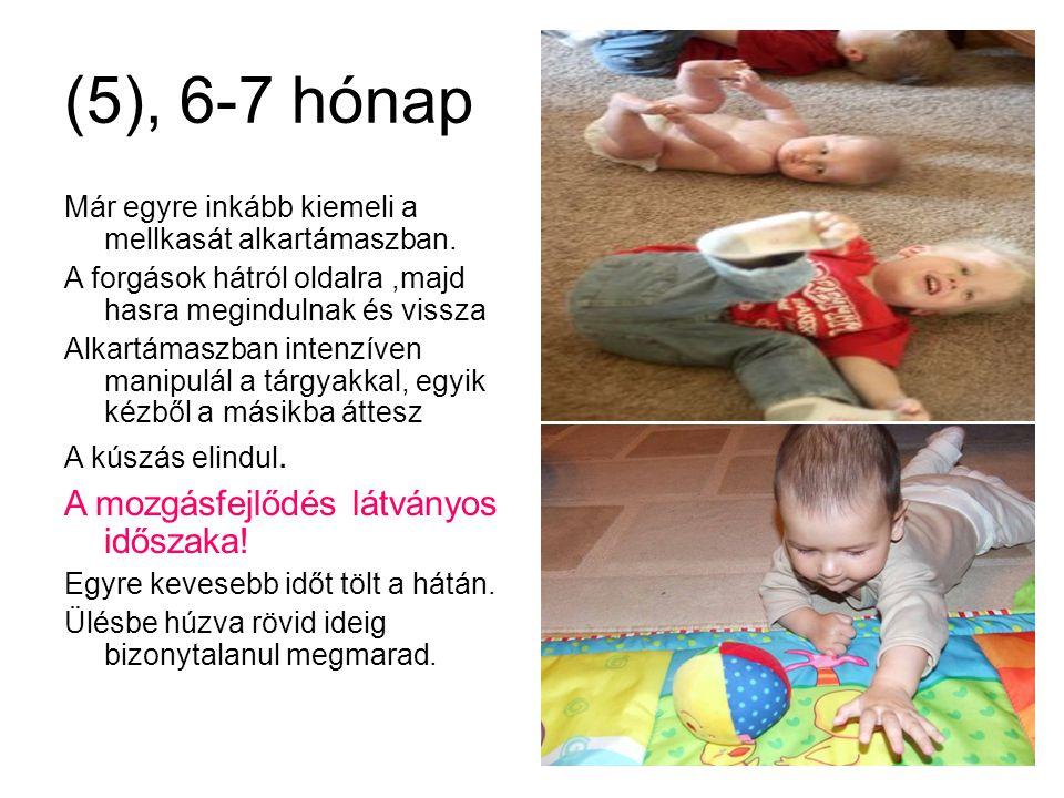(5), 6-7 hónap A mozgásfejlődés látványos időszaka!