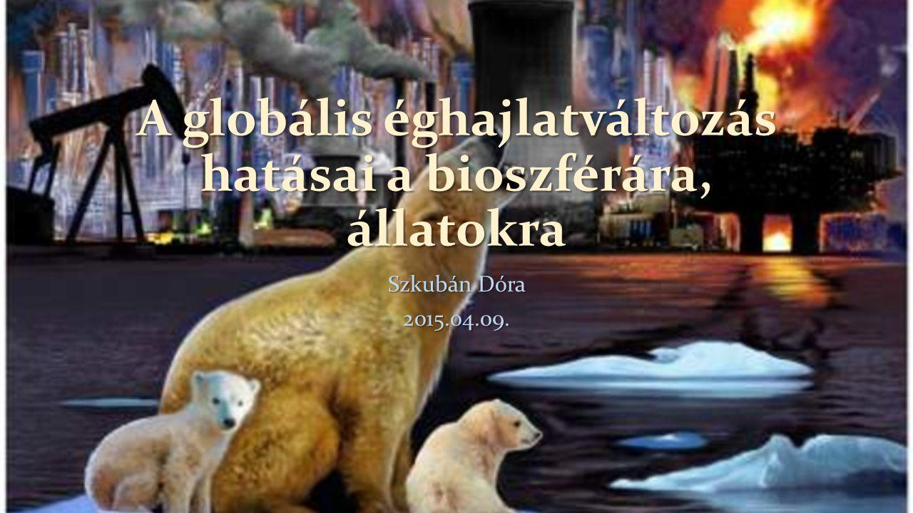 A globális éghajlatváltozás hatásai a bioszférára, állatokra