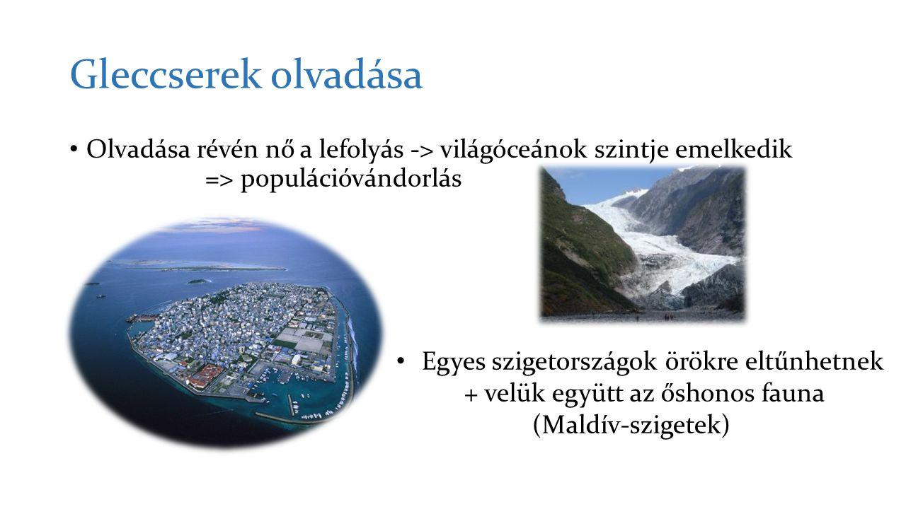 Gleccserek olvadása Olvadása révén nő a lefolyás -> világóceánok szintje emelkedik => populációvándorlás.