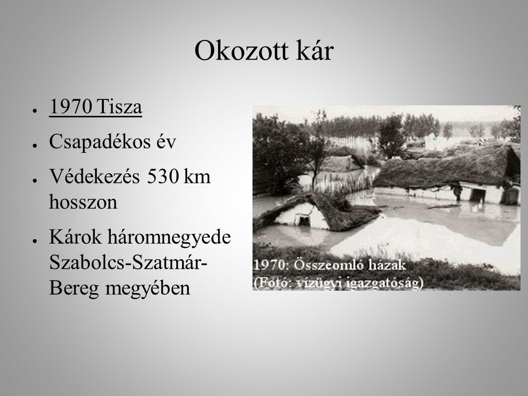 Okozott kár 1970 Tisza Csapadékos év Védekezés 530 km hosszon