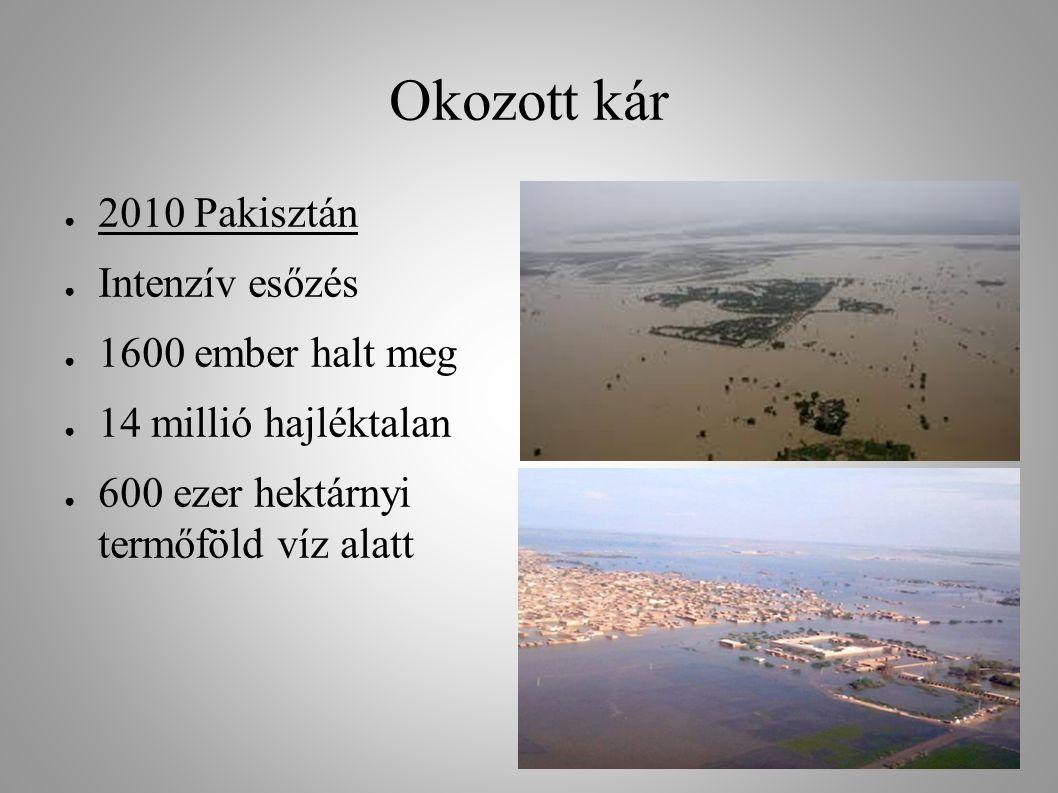 Okozott kár 2010 Pakisztán Intenzív esőzés 1600 ember halt meg