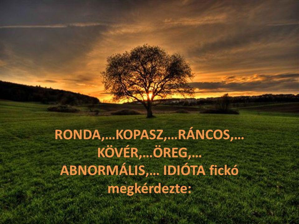 RONDA,…KOPASZ,…RÁNCOS,… ABNORMÁLIS,… IDIÓTA fickó