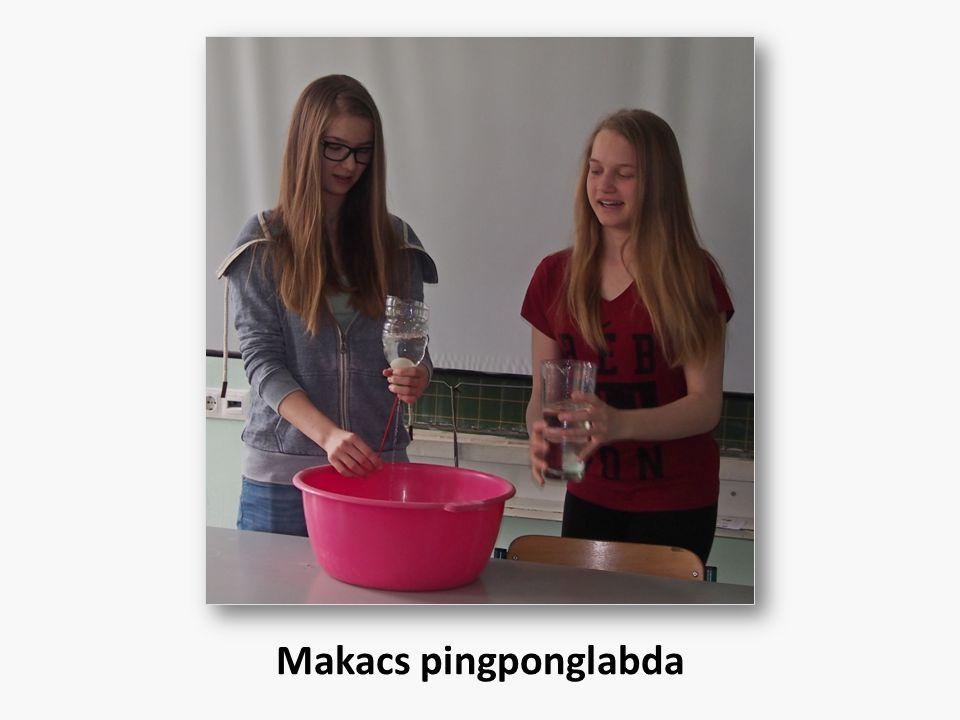 Makacs pingponglabda