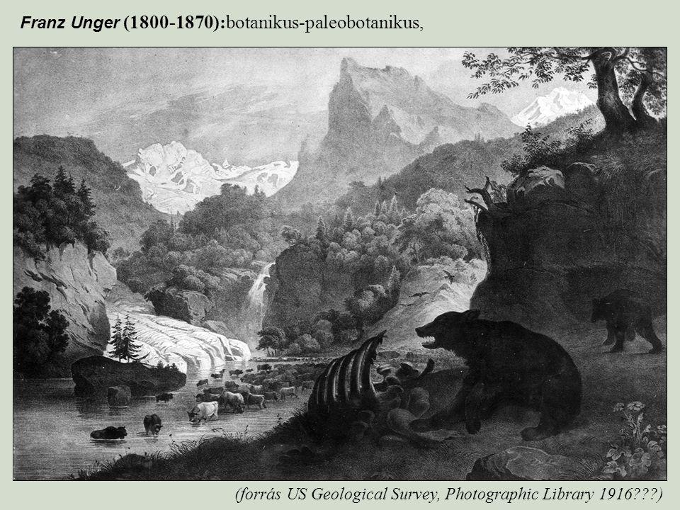 Franz Unger (1800-1870):botanikus-paleobotanikus,